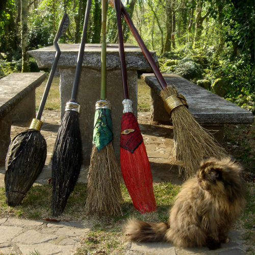 Broom sharing: scope volanti a noleggio